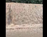 ВИДЕО: Водопади во Скопје после cилното невpeме денеска, улиците преплавени, а автомобилите едвај се движат