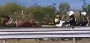 ВИДЕО: Наместо на шлеп-служба, полицаец го јаваше коњот по автопат во придружба на моторцикли